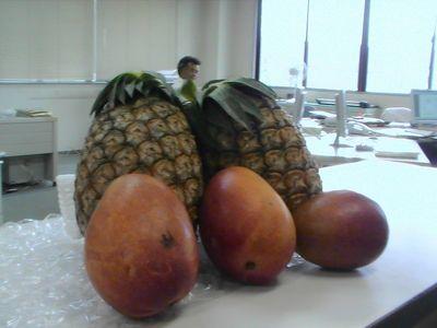 古川先生とフルーツのコラボ